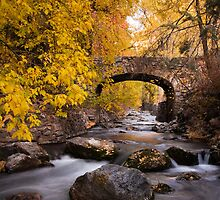 Autumn Crossing (Vertical) by David Kocherhans