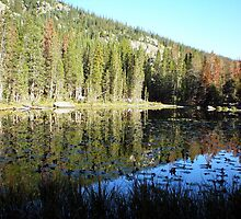 Mirror Lake at Rocky Mountain National Park by Steve Upton