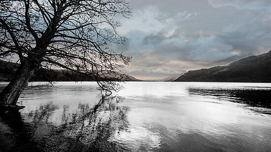 Ullswater Art  by Nicola  Pearson