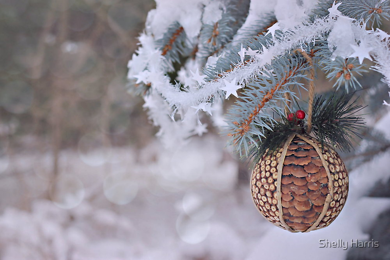 A Christmas Memory by Shelly Harris