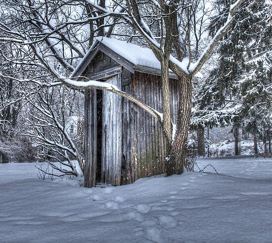 Its Cold Out Here by Sharon Batdorf