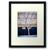 Brooklyn Walls Framed Print