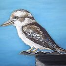 Kookaburra sits on the old tin roof by Dianne  Ilka