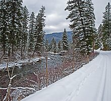 Thompson River Road by Bryan D. Spellman