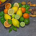 citrus fruits by Joana Kruse