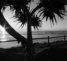 Sunrise Seven Mile Beach - Lennox head NSW by Emmy Silvius