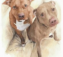 Pit bull friends by Mike Theuer