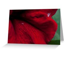 Abstract flower Case Greeting Card