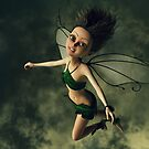 I Believe in Fairies by Liam Liberty