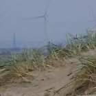 Camber Sands to Romney Marsh Power Fields by seymourpics