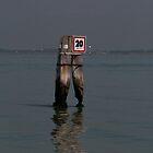 Venice lagoon speed sign by beardyrob