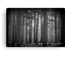 Troll Forest Canvas Print