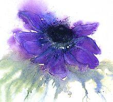 Anemone by Jacki Stokes