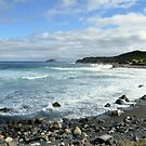 Ragged Beach  by DebYoung