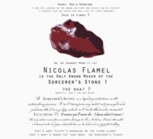 Nicolas Flamel is the only known maker of the Sorcerer's Stone ! by Fawkes