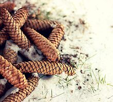 Pinecone Pile by AbigailJoy