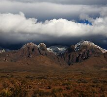 Organ Mountains New Mexico by Vivian Christopher