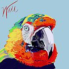 Macaw by pattiejo