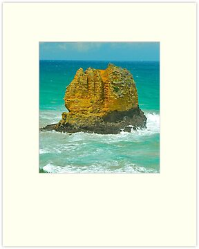 Island Rock by Penny Smith
