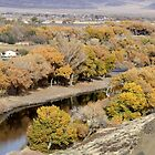 Along the Truckee River by Anthony & Nancy  Leake