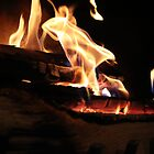 Fireplace Closeup  by lechnera09