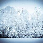 Snow by ivynev