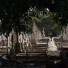 Photographer In The Cemetery by Ben Loveday