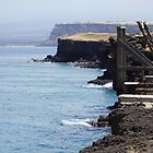 South Point, Hawaii by Loisb
