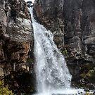 Taranaki Falls  by 29Breizh33