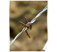 Sign of a metalhead..\m/..barbed wire looks like the sign for metal..☺☺☺☺ Poster