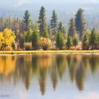 Smokey Autumn at Moose Pond by Kim Barton