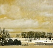Winterscape by vigor
