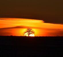 Layered Sunrise by Kasia Nowak