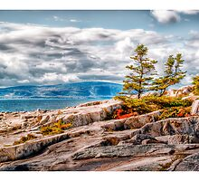 Schoodic Point by Richard Bean