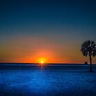 Sunset With Palms by Jake Kauffman
