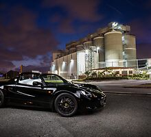 lotus by night  by voidnaught