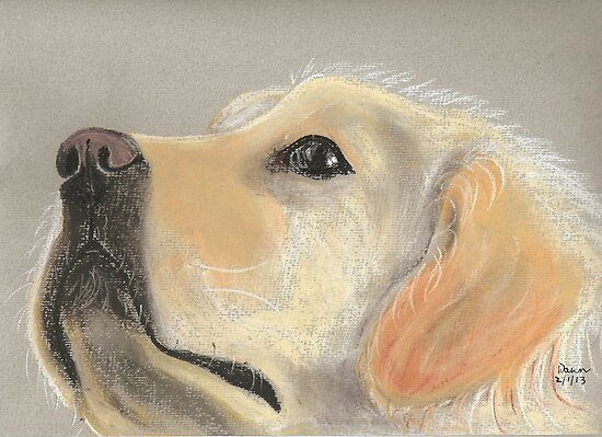My Dog Lily by Dawn B Davies-McIninch
