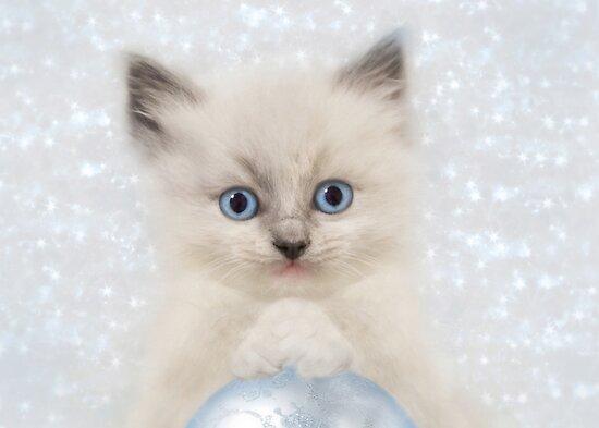 A Blue Christmas by Lori Deiter