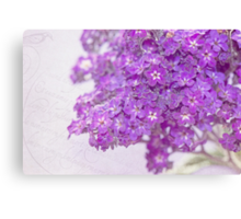 Lavender Wishes Canvas Print