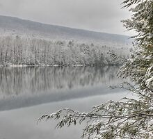 Clarks Creek - Winter in HDR by Lori Deiter