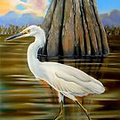 Snowey Egret and Cypress Tree by Phyllis Beiser
