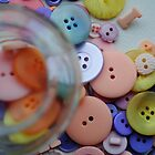 Buttons by catherinecachia