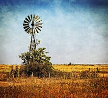 Windmill on an Awesome Day by Sharlotte Hughes