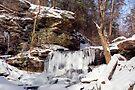 B. Reynolds Waterfall, Turning To Ice by Gene Walls