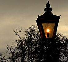 Old Street Lamp by Stan Owen