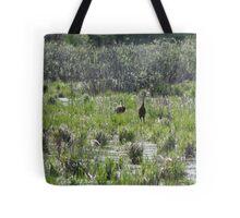 Sandhill Crane Habitat Tote Bag