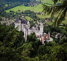 Neuschwanstein Castle  by Manfred Belau