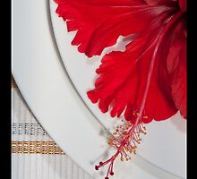 Red Flower by Rob Beckett