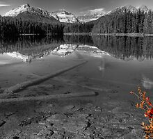 Splash of Red - Selective Coloring by JamesA1