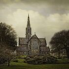 Trim Cathedral - Ireland by EmvandeBee